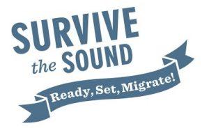 Survive the Sound