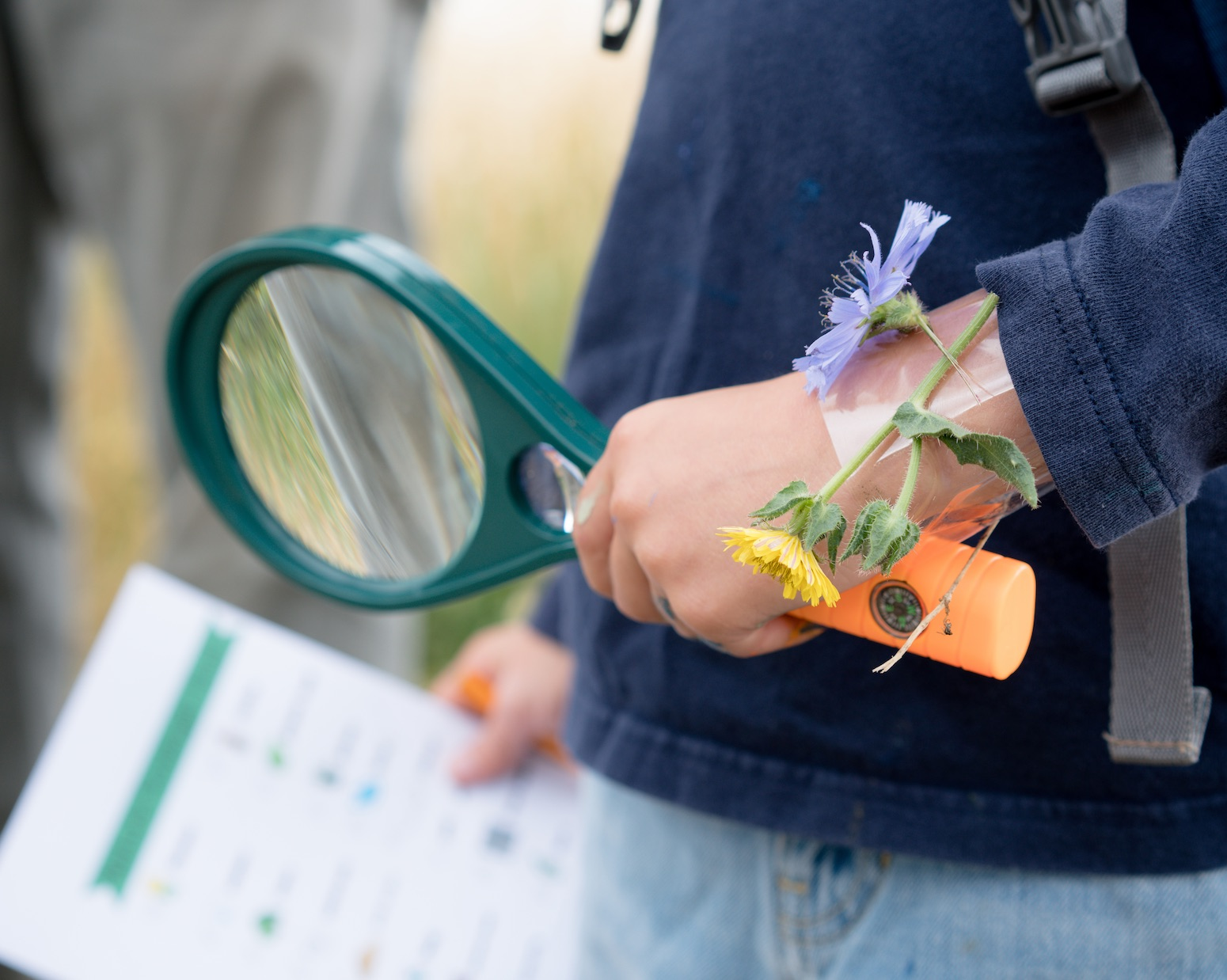 child with magnifying glass showing active learning outside