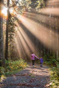 Walking Curriculum: learning outside